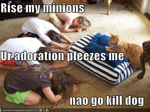 Rise my minions Ur adoration pleezes me nao go kill dog