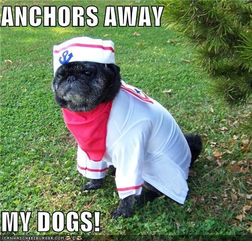 ANCHORS AWAY  MY DOGS!