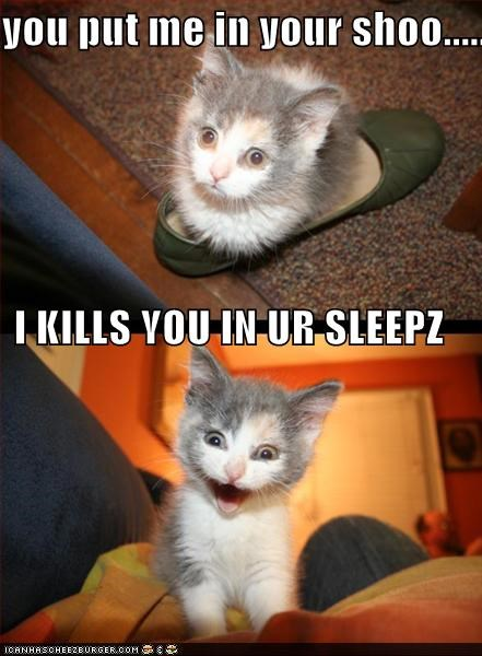 you put me in your shoo..... I KILLS YOU IN UR SLEEPZ
