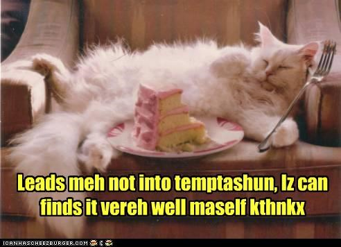 cake,caption,captioned,cat,do it yourself,eating,fat,food,fork,full,holding,kthx,noms,sleeping,stuffed,temptation,tired
