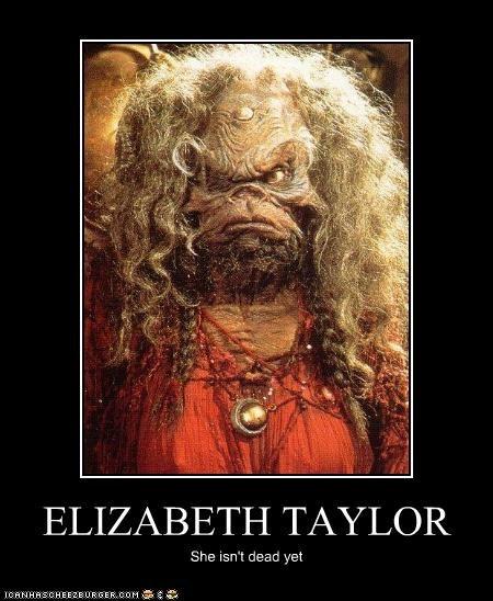 Aughra,elizabeth taylor,lolz,old,puppets,The Dark Crystal