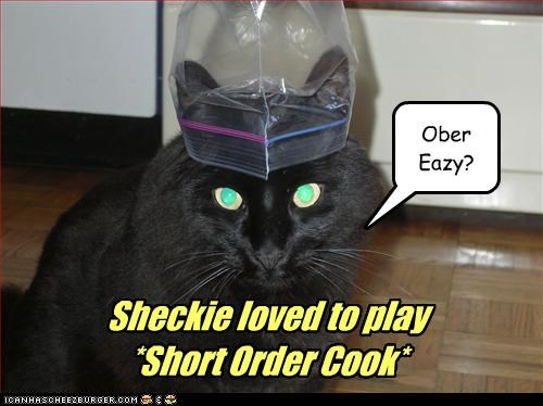 bag,black,caption,captioned,cat,cook,eggs,overeasy,playing,pretending,short order,ziploc