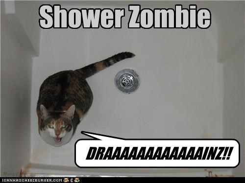brains,caption,captioned,cat,do want,drains,possessed,pun,shower,zombie