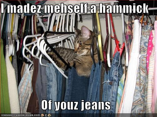 caption,captioned,cat,comfy,creation,do it yourself,hammock,jeans,lazy,made