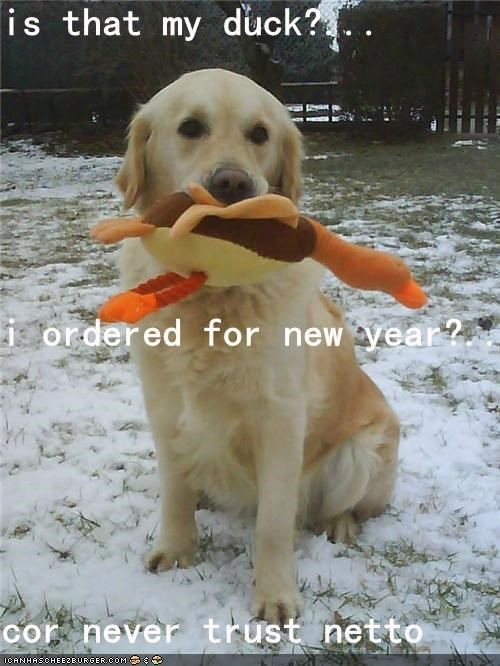 is that my duck?... i ordered for new year?... cor never trust netto