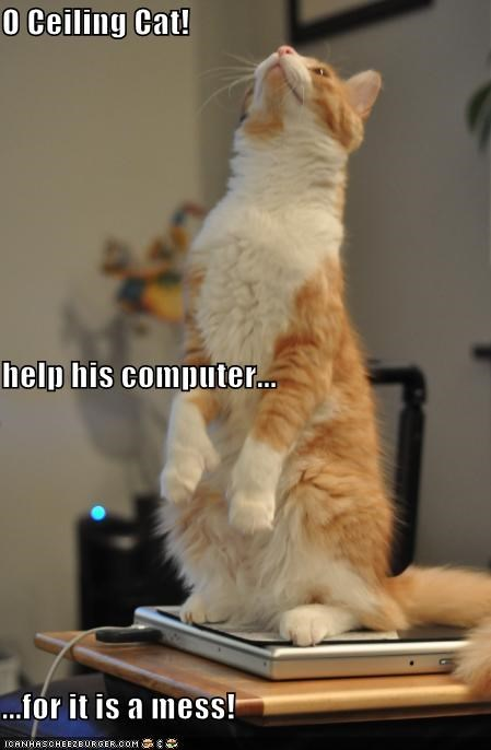 O Ceiling Cat! help his computer... ...for it is a mess!