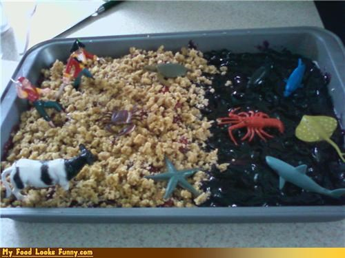 beach,cake,land,ocean,sea,toys