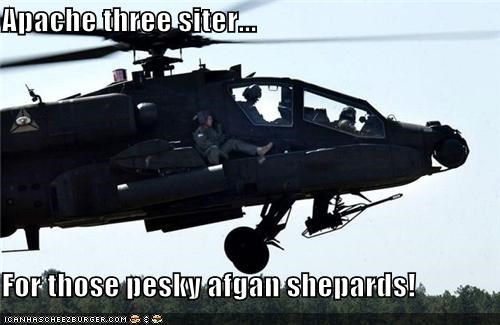 Apache three siter...  For those pesky afgan shepards!