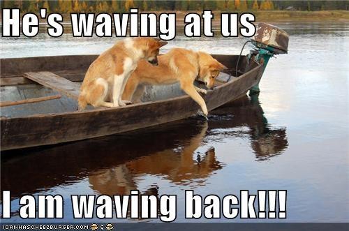 boat,fish,friendly,lake,water,wave,waving,whatbreed