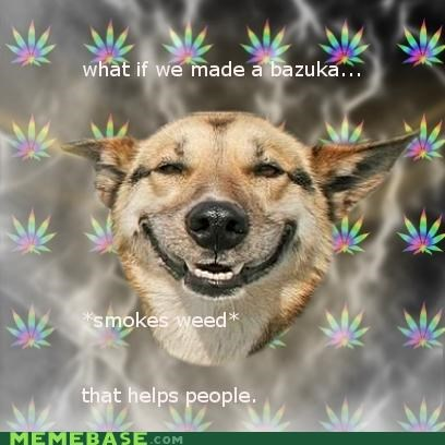 Stoner Dog Wants To Help!