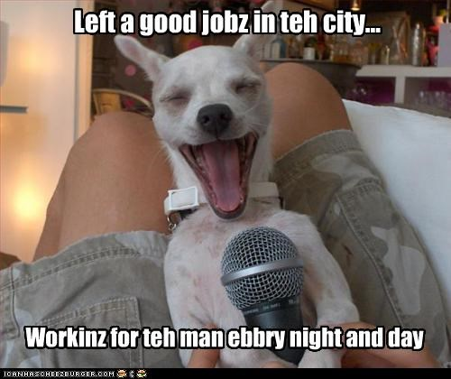 Left a good jobz in teh city...