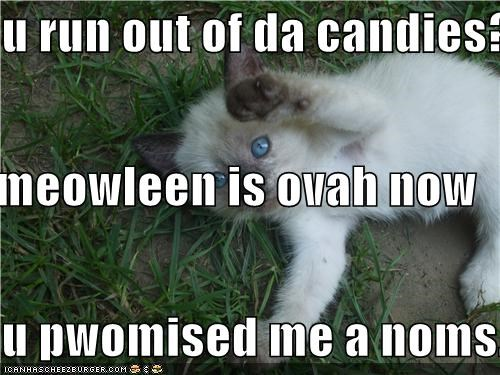 u run out of da candies? meowleen is ovah now u pwomised me a noms.