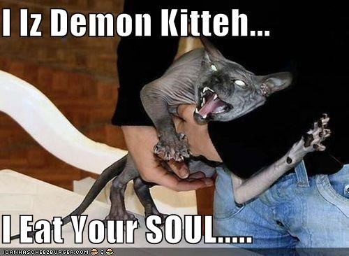 I Iz Demon Kitteh...  I Eat Your SOUL.....