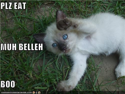 PLZ EAT  MUH BELLEH BOO