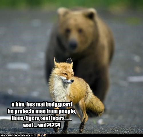 o him, hes mai body guard he protects mee frum peeple, lions, tigers, and bears....... wait ... wut?!?!?!