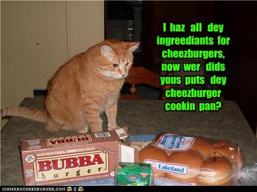 I  haz   all   dey   ingreediants  for   cheezburgers,   now  wer   dids  yous  puts   dey   cheezburger  cookin  pan?