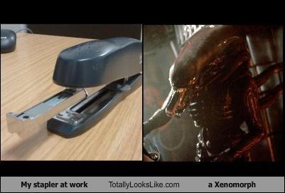 My stapler at work Totally Looks Like a Xenomorph