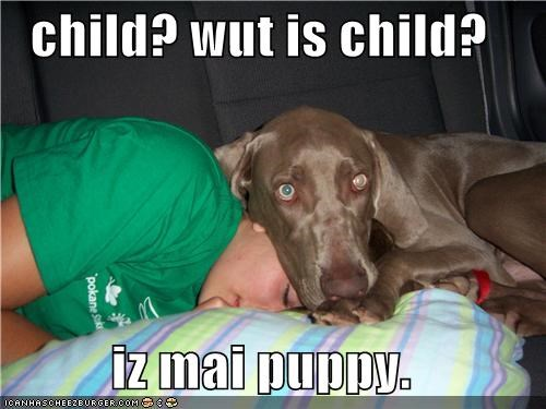 child? wut is child?  iz mai puppy.