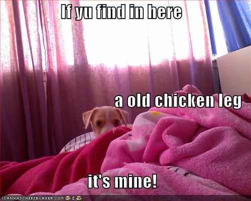 If yu find in here a old chicken leg it's mine!