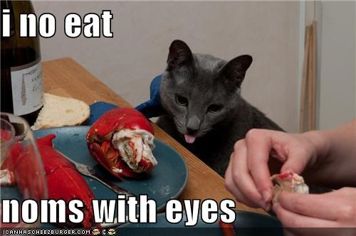i no eat  noms with eyes