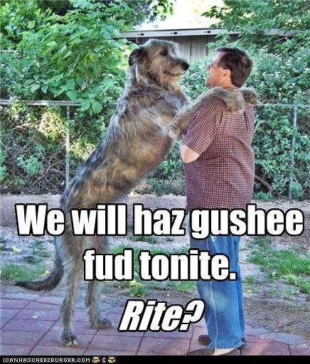 We will haz gushee fud tonite.