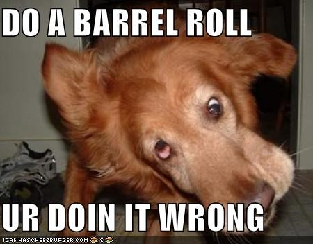DO A BARREL ROLL  UR DOIN IT WRONG