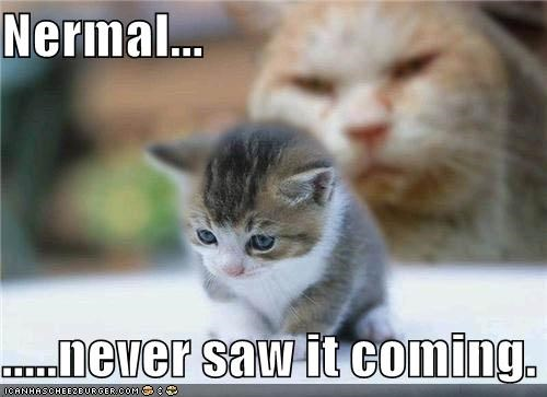 Nermal...  .....never saw it coming.