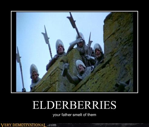 monty python,elderberries,holy grail
