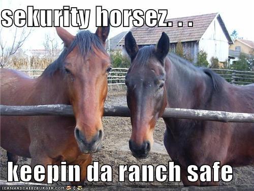 sekurity horsez. . .  keepin da ranch safe
