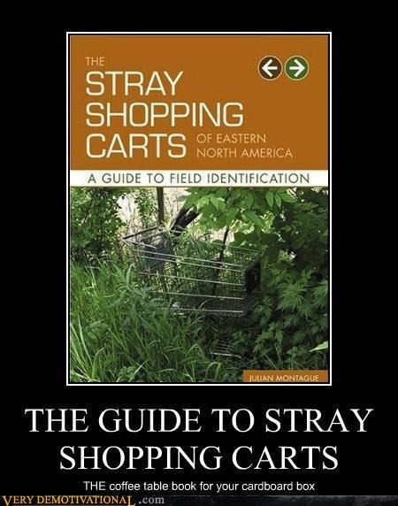 THE GUIDE TO STRAY SHOPPING CARTS