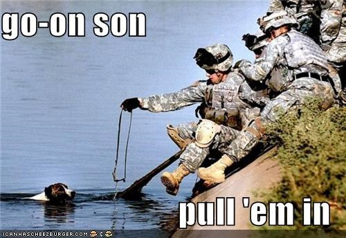 go-on son  pull 'em in