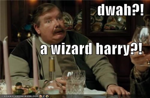 dwah?! a wizard harry?!