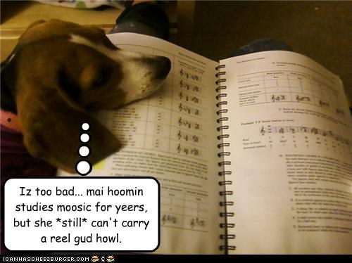 beagle,FAIL,howl,Music,study,studying,too bad,unfortunate,years