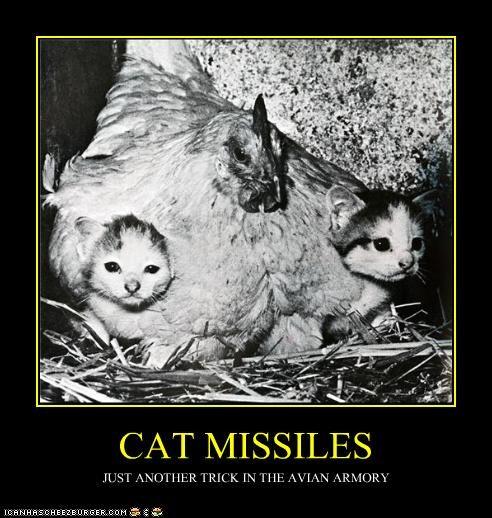 CAT MISSILES