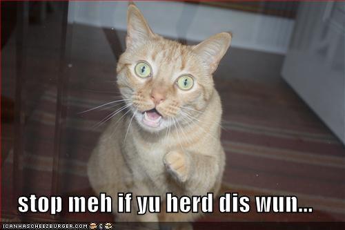 stop meh if yu herd dis wun...