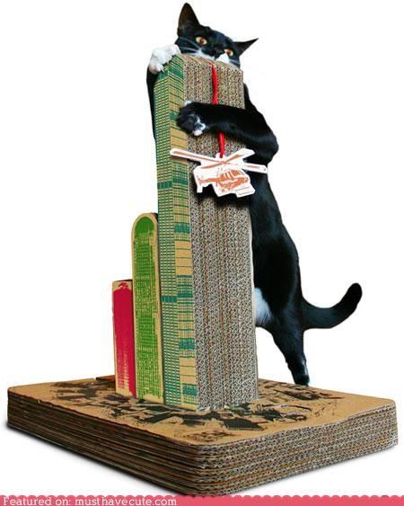 cardboard,cat,cat toy,godzilla,pets,scratcher,scratching post