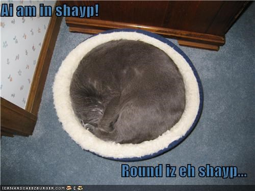 Ai am in shayp!  Round iz eh shayp...