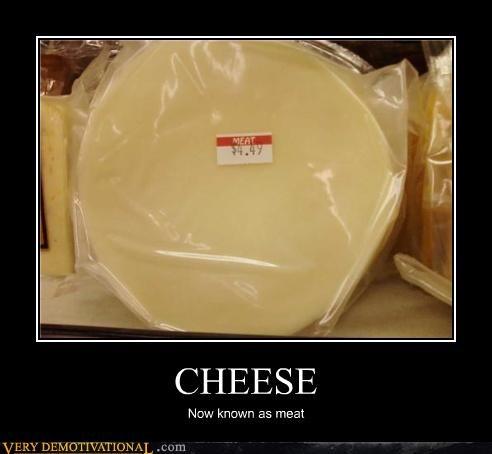 animals,cheese,food,lactose,nom nom nom