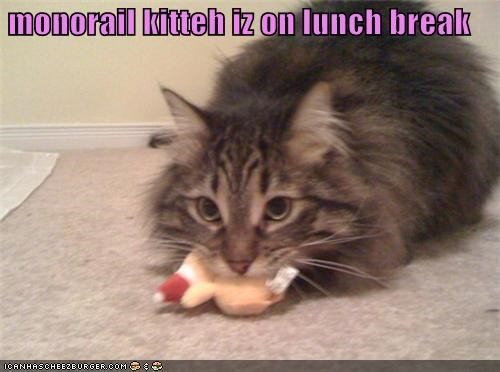 monorail kitteh iz on lunch break