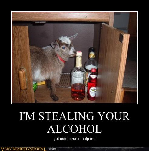 I'M STEALING YOUR ALCOHOL