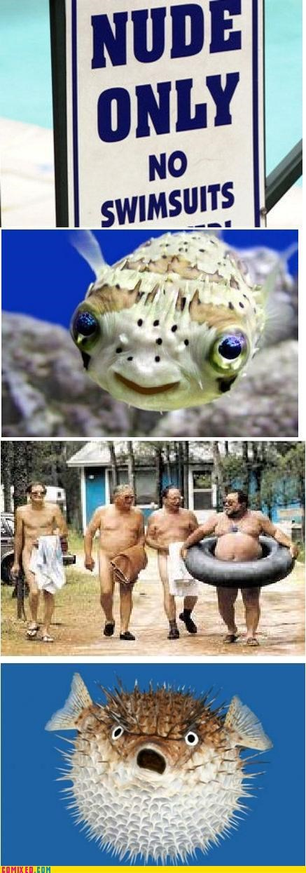 animals,beach,disappointment,fish,nudity,unsee