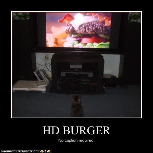 HD BURGER