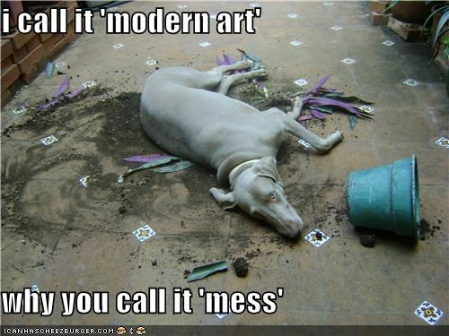 confused,dirt,flower pot,Hall of Fame,mess,modern art,same difference,synonyms,weimaraner