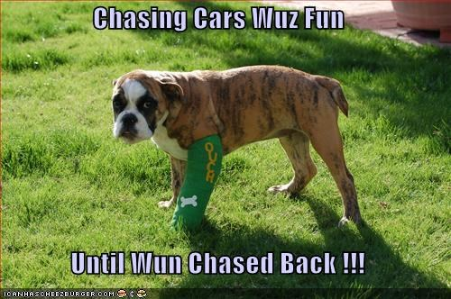 Chasing Cars Wuz Fun  Until Wun Chased Back !!!