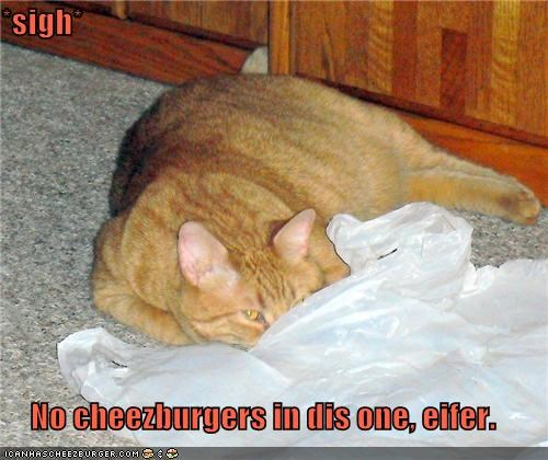 *sigh*  No cheezburgers in dis one, eifer.