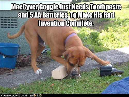 MacGyver Goggie Just Needs Toothpaste and 5 AA Batteries  To Make His Rad Invention Complete.