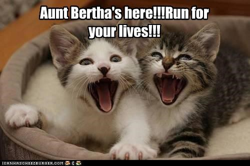 Aunt Bertha's here!!!Run for your lives!!!