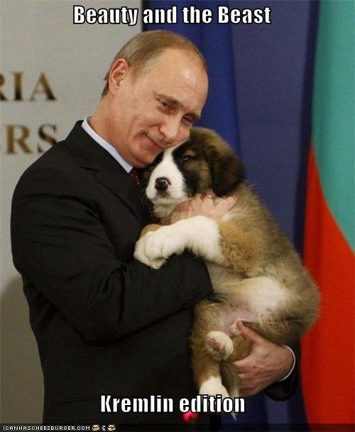 animals,funny,lolz,puppy,Vladimir Putin,vladurday