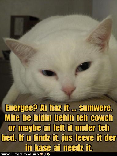 Energee?  Ai  haz  it  ...  sumwere.  Mite  be  hidin  behin  teh  cowch  or  maybe  ai  left  it  under  teh  bed.  If  u  findz  it,  jus  leeve  it  der  in  kase  ai  needz  it.