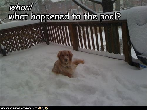 what happened to the pool?